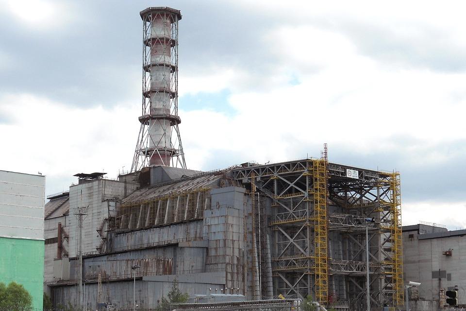 Huba požierajúca žiarenie v Černobyle zachráni budúcich astronautov