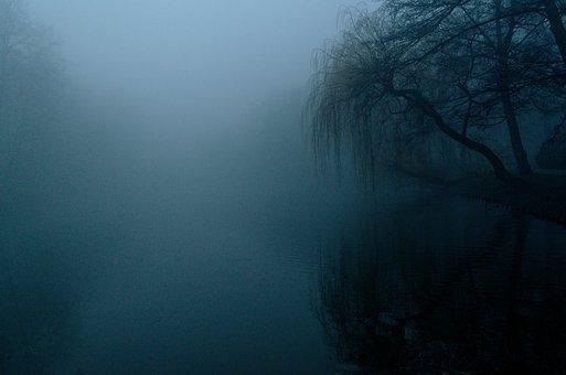 霧の中, 暗い, ネイチャー, ツリー, 風景, ミステリー, ブルー