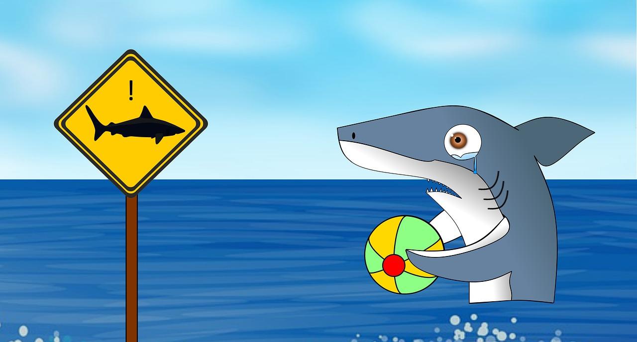 Shark, Hai, Jokes, Funny, Comic, Fun, Sea, Water, Swim