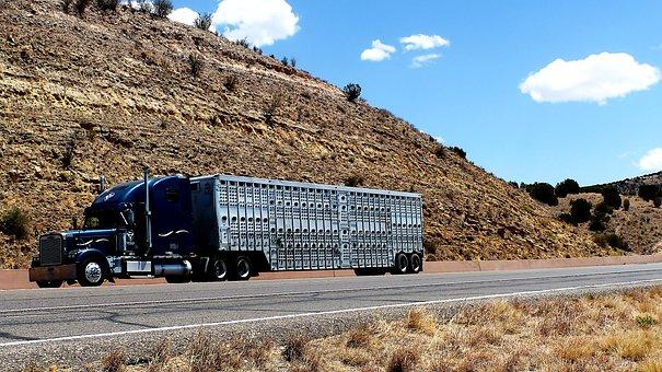 Transporte, Camión, Remolque, Carretera