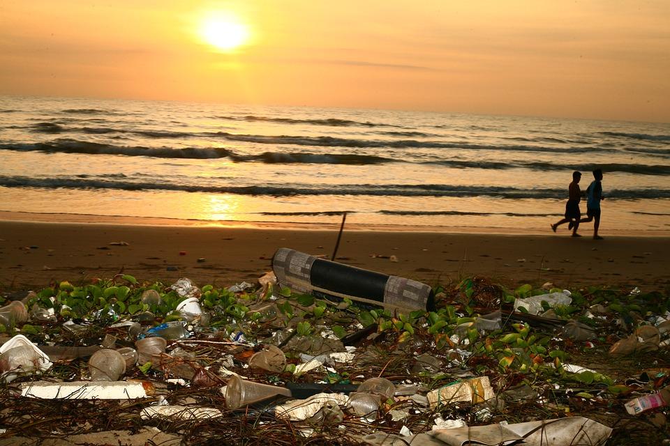 Ocean, Cestino, Beach, Inquinamento, Conservazione