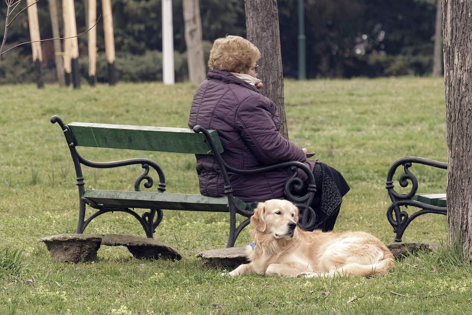 elderly with dog