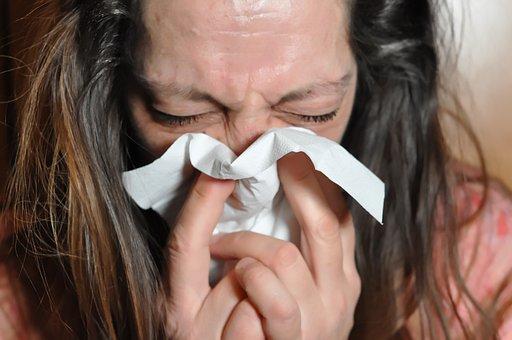 Sniff, Flu, Cold, Handkerchief