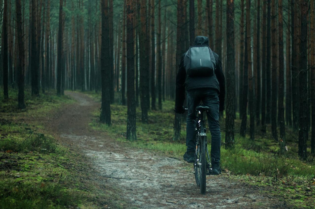 картинки велосипедиста в лесу копирование восстановление