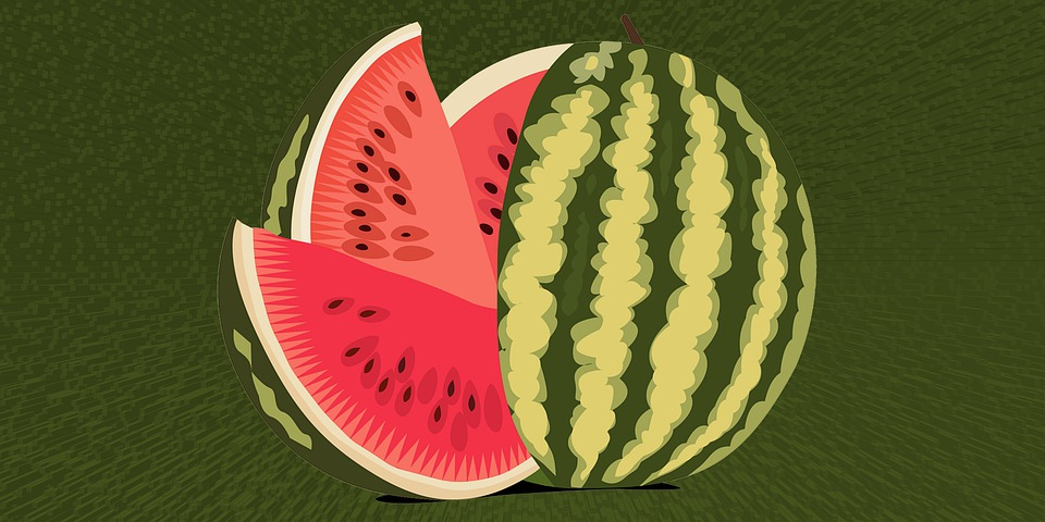 watermelon-4929431_960_720.jpg