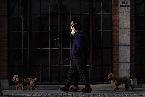 Mask, Walk, Dog, Pet, New Normal, Virus
