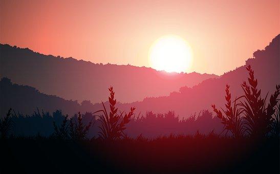 Sunset, Sky, Tree, Landscape, Sunrise