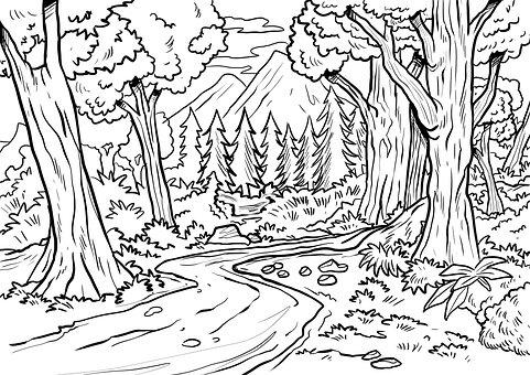 Ausmalbild Regenwald Ausmalbilder Kostenlos Zum Ausdrucken