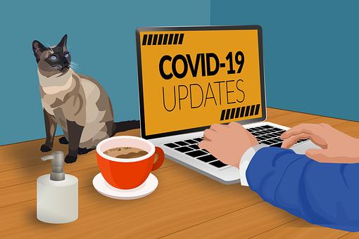 Covid-19, Travailler De La Maison