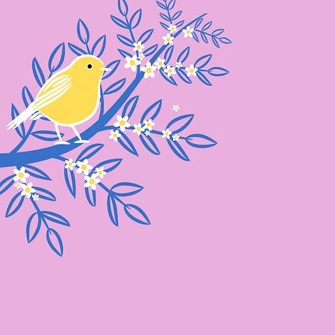 1 000 Best Free Clip Art Images Flower Borders More