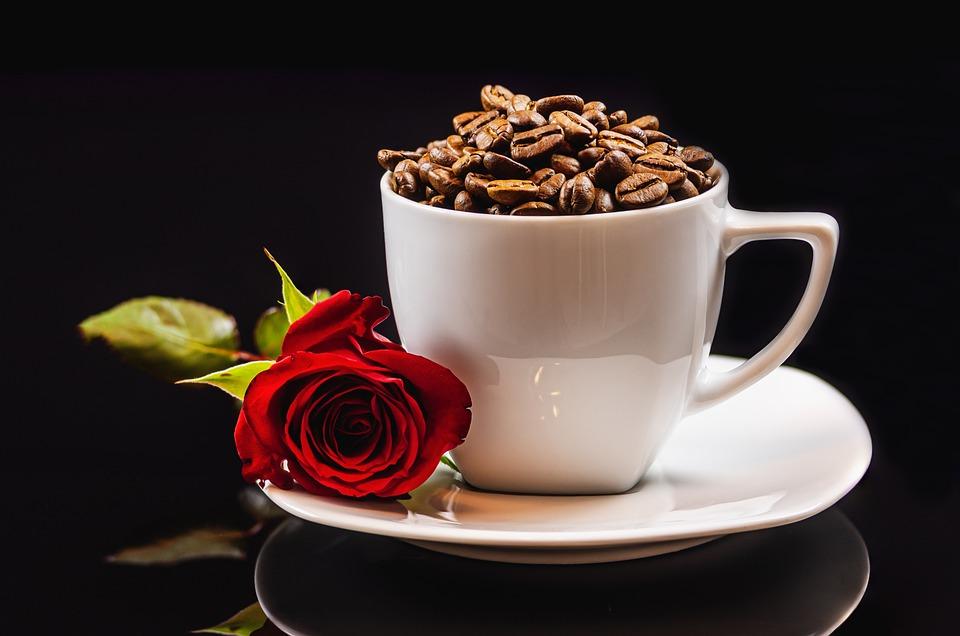 Kaffeetasse, Kaffeebohnen, Rose, Kaffee, Tasse, Koffein