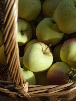 Apples, Basket, Fruit, Autumn, Harvest