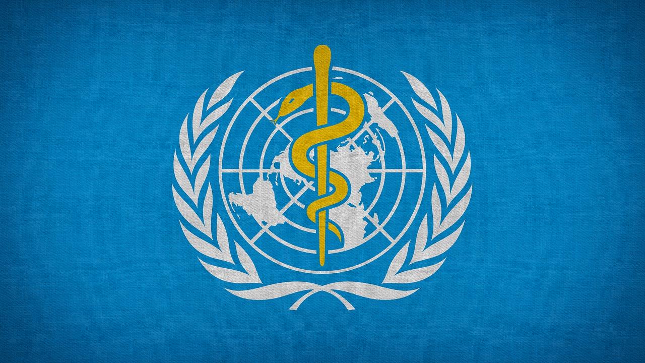Who World Health Organization - Free image on Pixabay