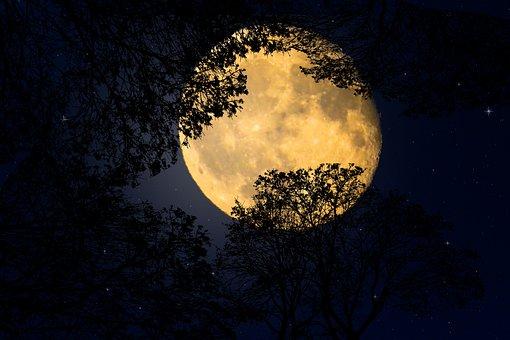 Background, Nature, Moonlight, Emotion