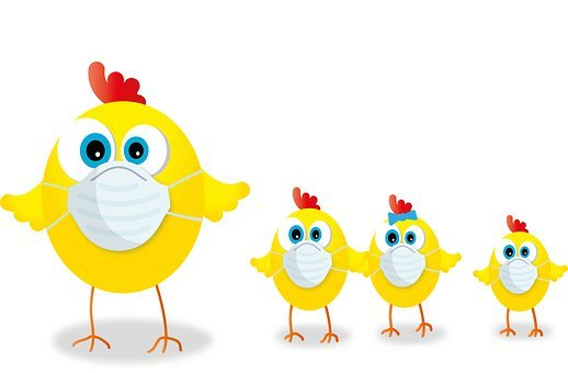 700+ kostnadsfria bilder med Påsk Kyckling och Påsk - Pixabay