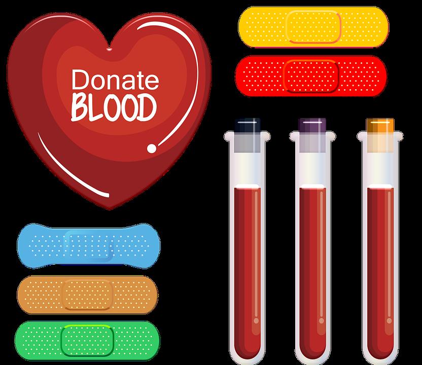 Donate Blood, Blood, Bandaids, Donation, Plasma, Health