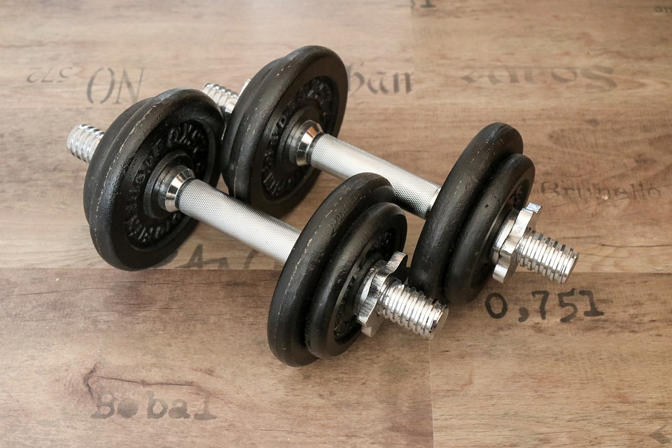 Fitness, Fitness Studio, Gym, Muscles, Dumbbell