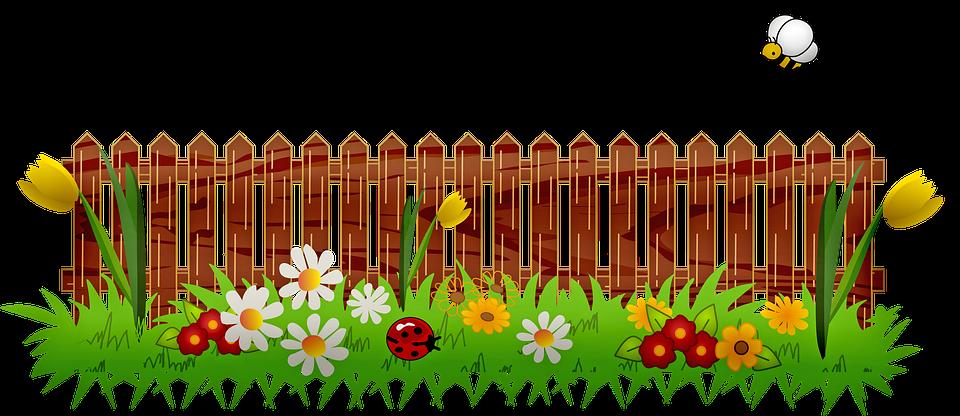 Giardino, Primavera, Colture, Park, Uccelli, Api