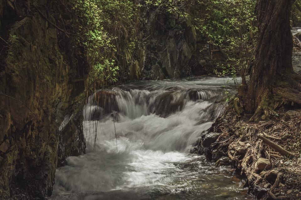 Stream, Creek, Scenic, Nature, Woods, Scenery, Rocks