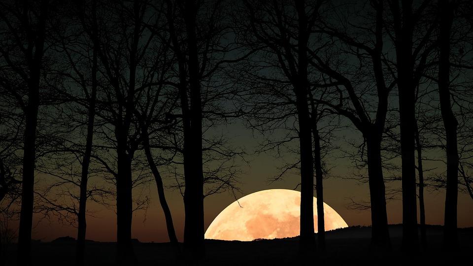 Moonrise, Full Moon, Evening, Twilight, Mystical