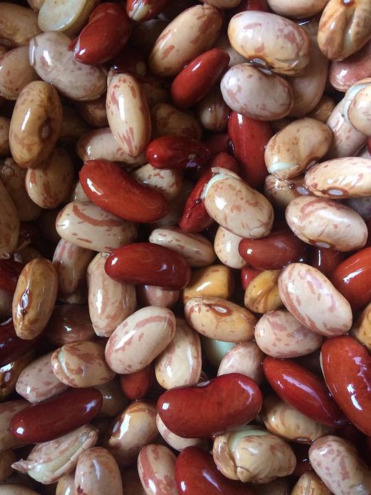 Beans Bean Food - Free photo on Pixabay