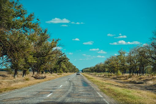 Tree-fringed road to signify hit the road
