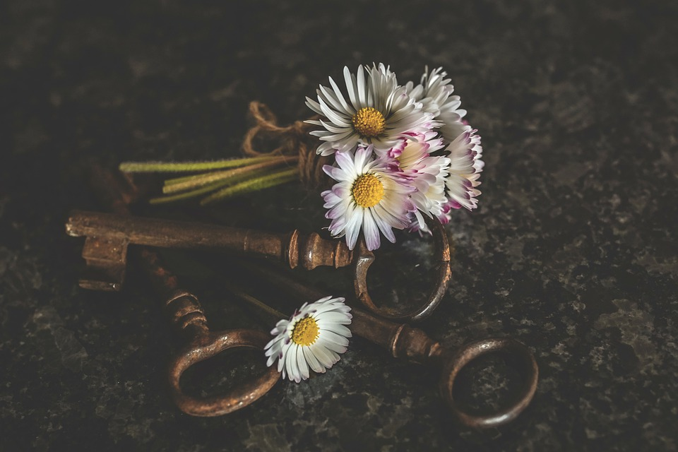 Daisy, Sträusschen, White, Key, Antique, Mood, Love