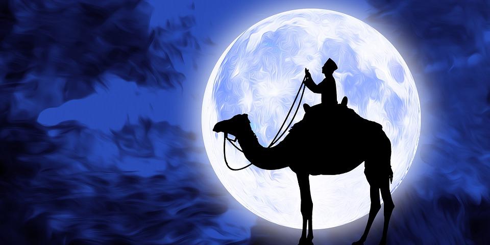 祈り, ラマダン, イスラム, イスラム教徒, キャメル, 月, 泊, 空, 満月, 銀河, シルエット