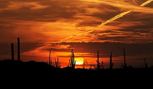 Sunset, Nature, Sonoran Desert, Arizona