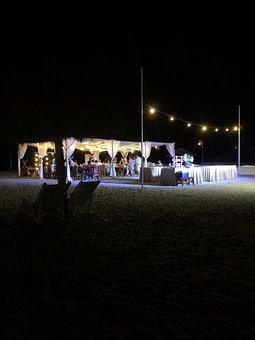 Wedding, Lights, Fairy Lights, Night