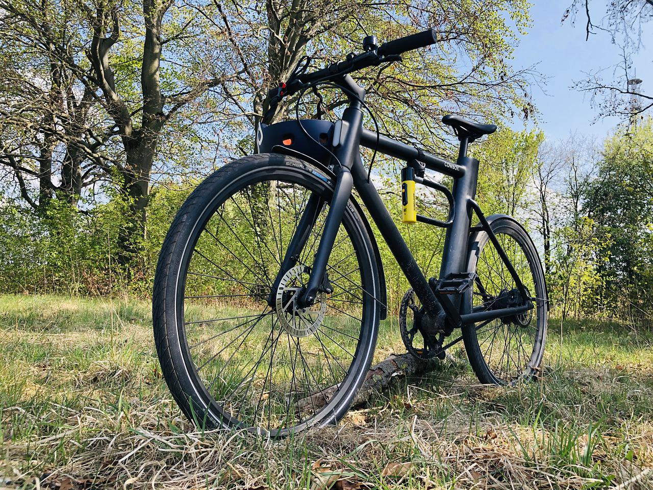How to Buy Electric Bikes Online in California?
