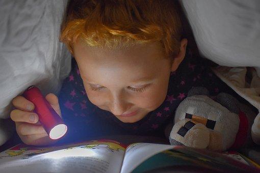 読書, ベッド, 懐中電灯, 本, 読み取り, 学ぶ, ページ, 毛布, 砦