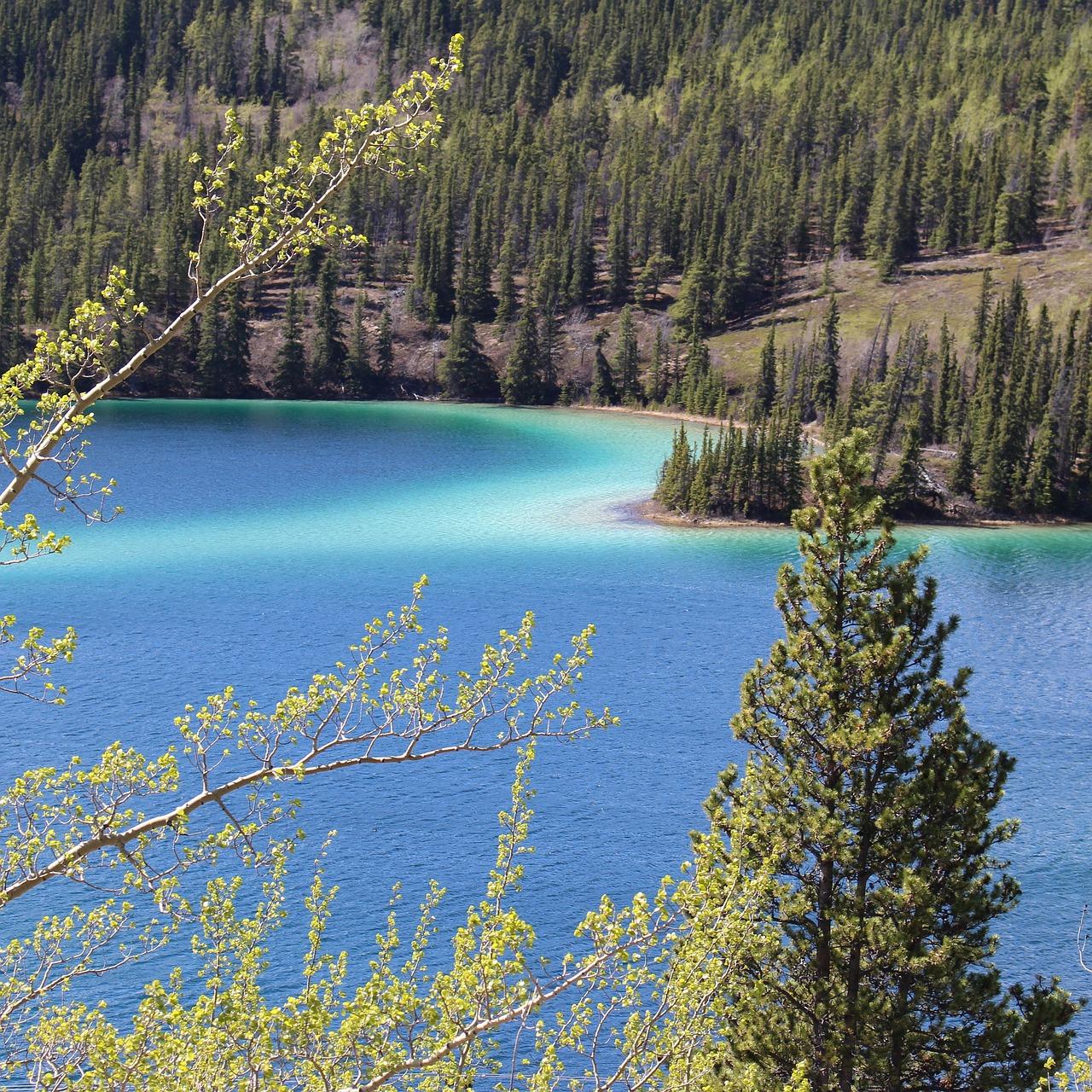 Emerald Landscape