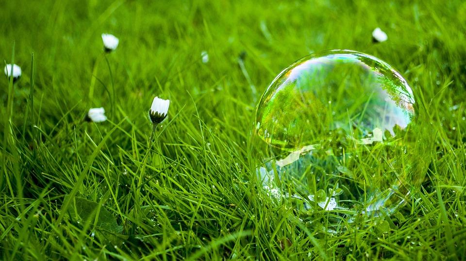 草, Soap, 気泡, 自然, うれしそうな, カラフルです, 反射, ボール, ツリー, 緑, 笑顔