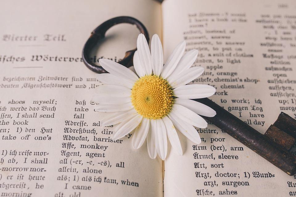キー, 古い, 花, ノスタルジックです, ビンテージ, マーガレット, さび, 金属, アンティーク, 辞書