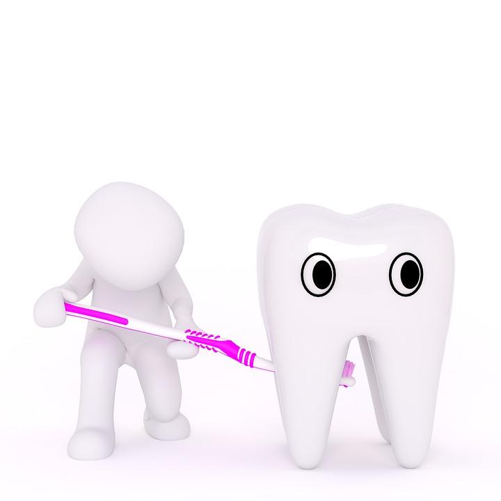歯科医, 歯, 歯ブラシ, クリーン, 適切なクリーン, デモ, 笑顔, きれい, 口, 医師, 歯科