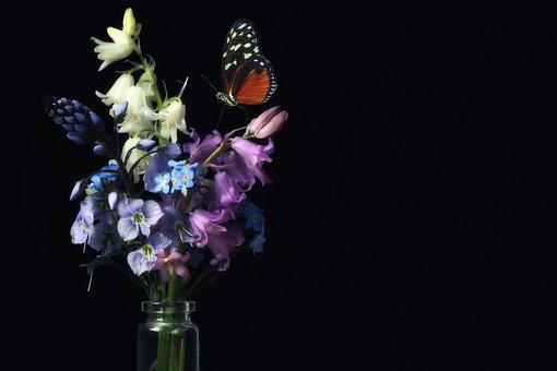 Spring, Butterfly, Spring Bouquet