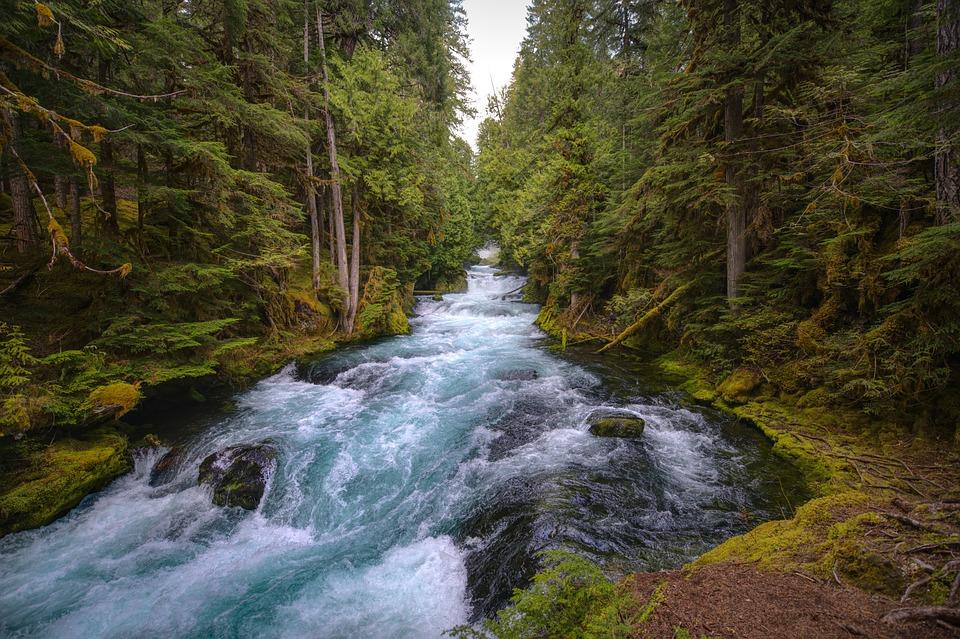 マッケンジー川, セントラル オレゴン, 森林, 緑豊かです, 川, Sahalie の滝, 自然