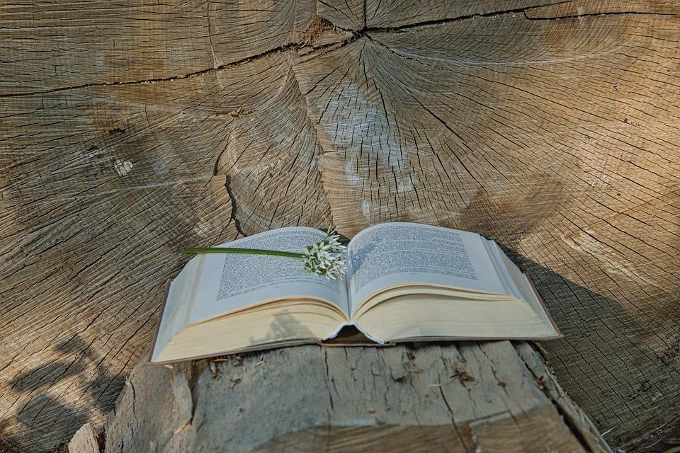 11 правильных мыслей на основе восточной философии