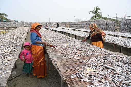 Dryfish Penjual, Wanita, Pemberdayaan