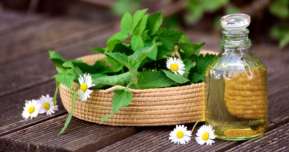 Herbs, Natural Medicine, Medicinal Herbs, Herb Garden