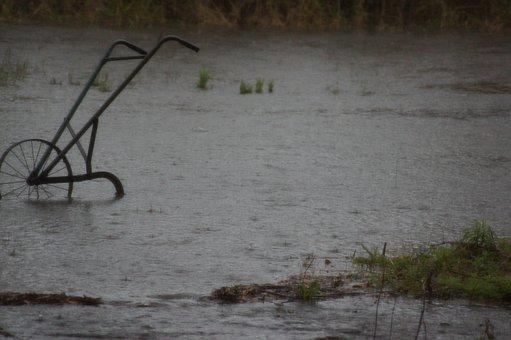 Flood, Water, Grass, Nature, Rain, Plow