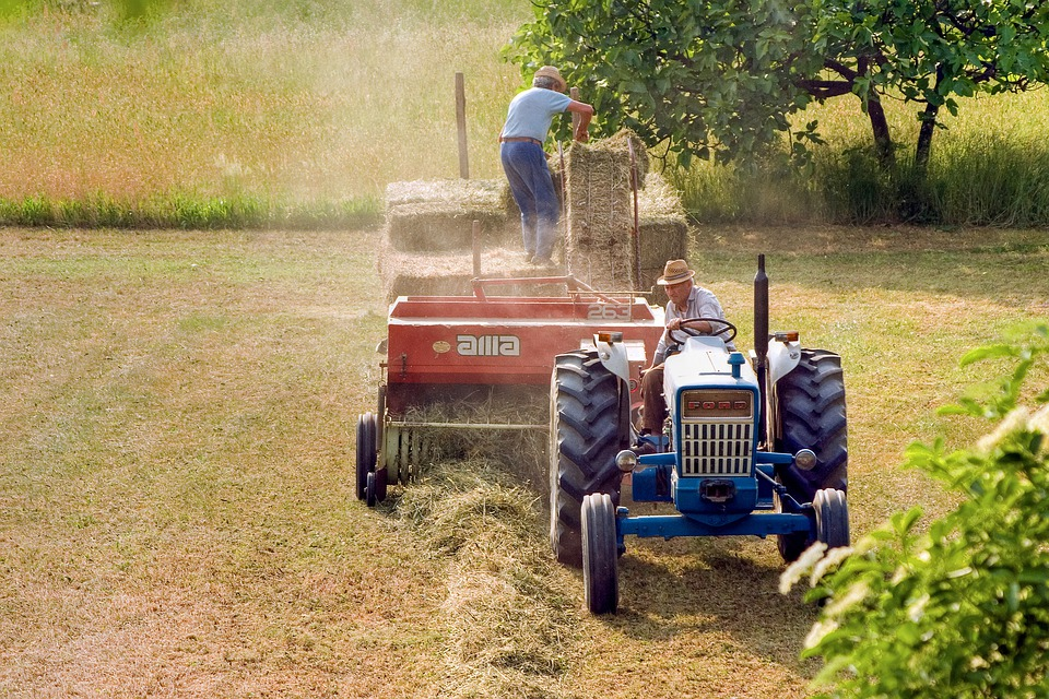 Landwirtschaft, Hay, Feld, Kampagne, Traktor