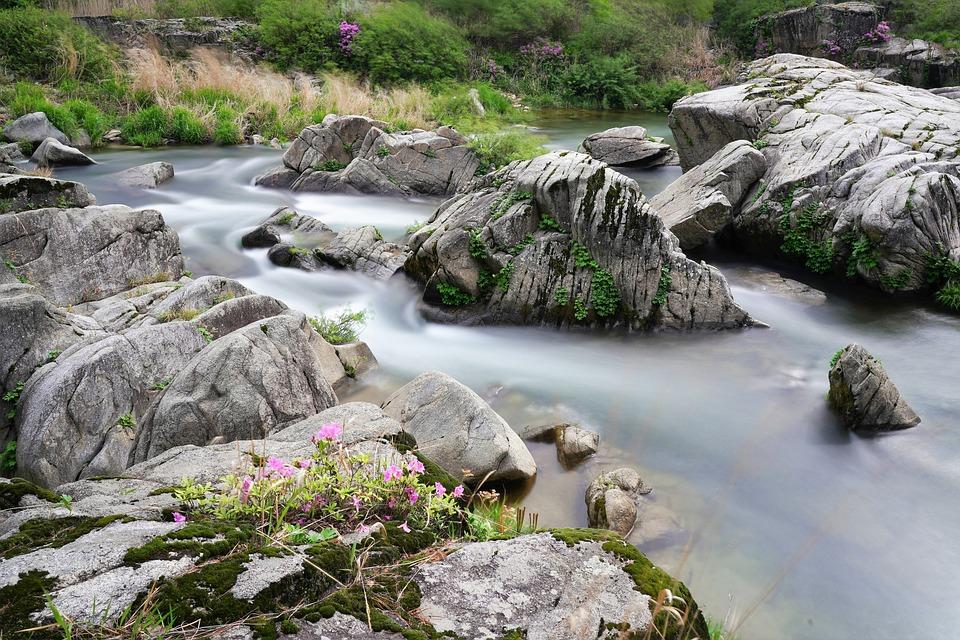 Rocks, Brook, Stream, Flow, Flowing Water