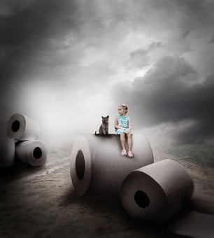 Girl Sitting On A Tissue Roll, Cat