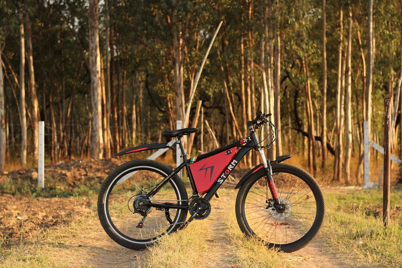 Електровелосипед - усі за та проти