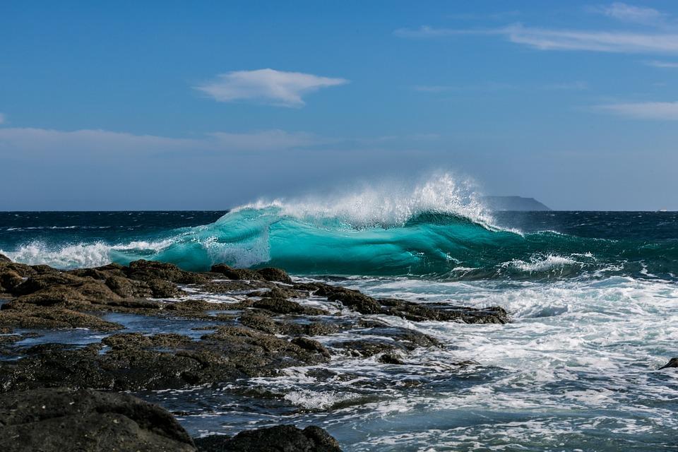 Óceán, Hullám, Tenger, - rónika
