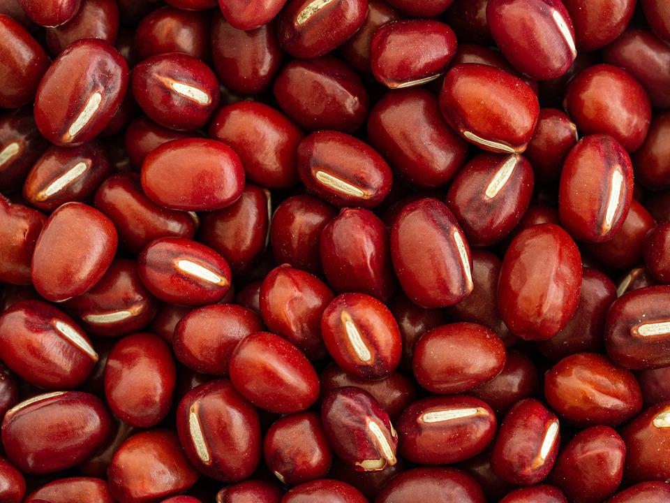 Beans, Plant In The Legume Family, Adzuki