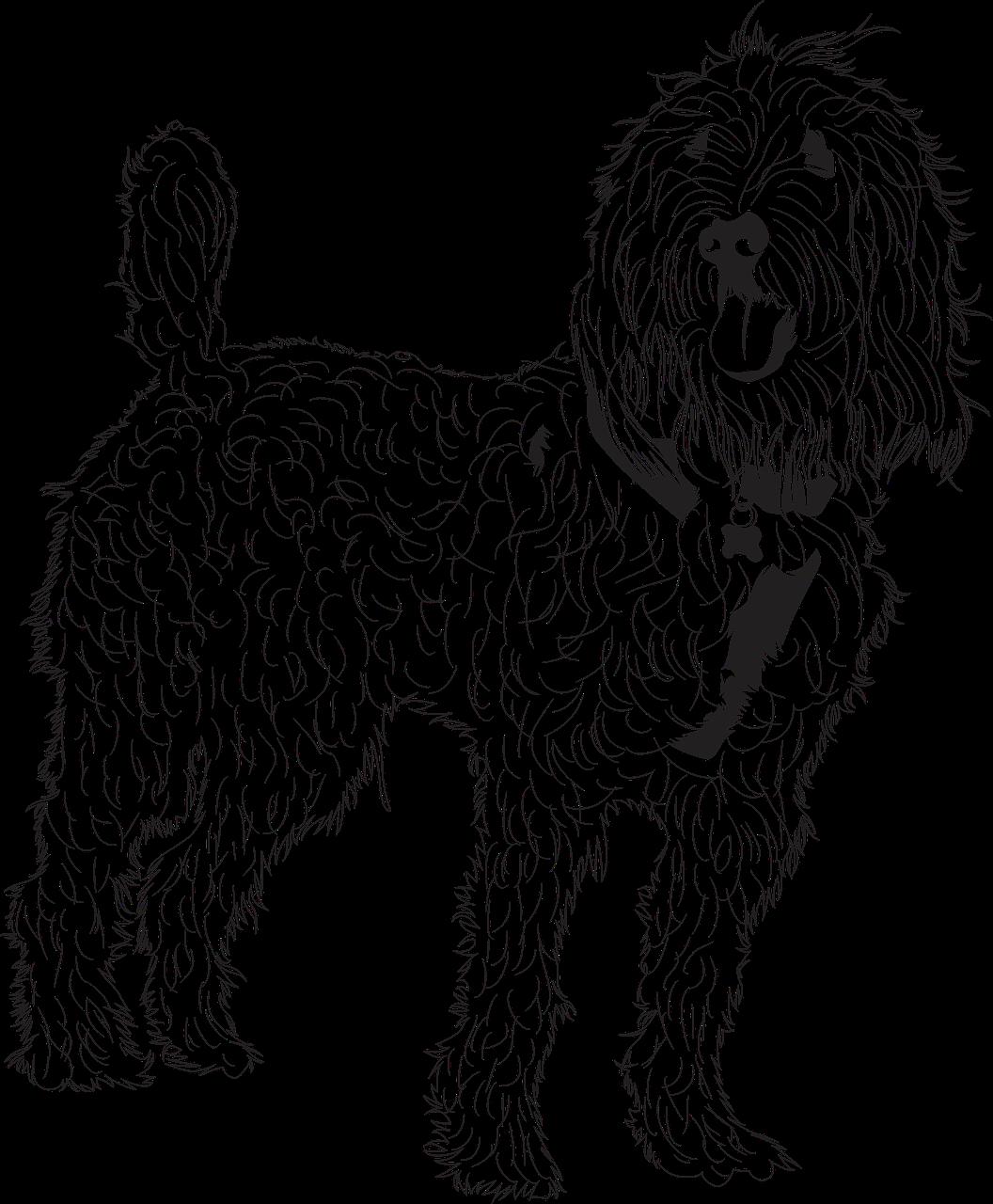 Doodle Golden Dog Free Vector Graphic On Pixabay