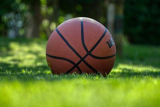 Basketball, Play, Meadow, Grass, Green